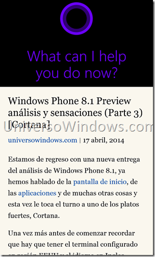 WP 8.1 IE 11 (1)